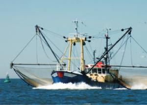 keeper-seafood-3
